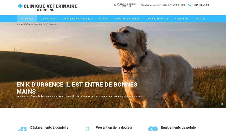 vétérinaire pour urgence Marseille
