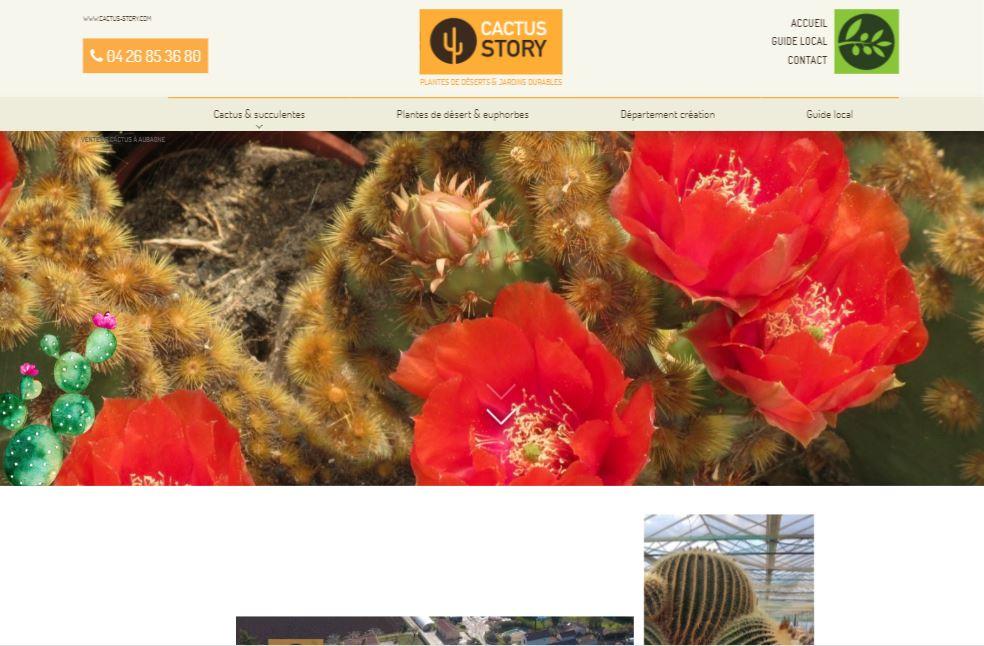 Vente de cactus en jardinerie à Aubagne