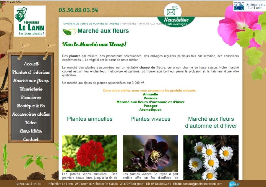 Vente de plantes vivaces plantes d 39 int rieur et plantes for Vente de plantes