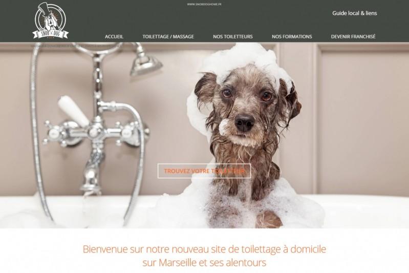 Toilettage pour chiens et chats à Marseille