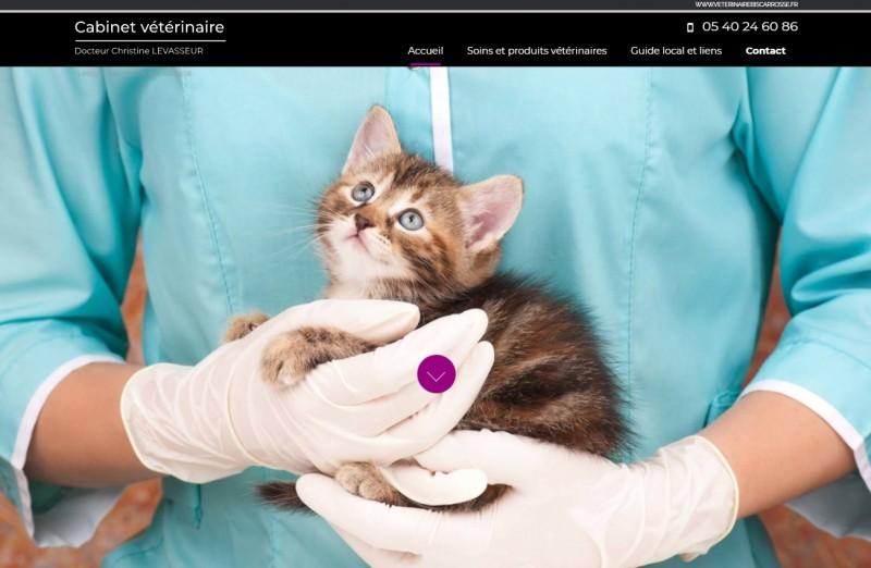Vétérinaire Biscarrosse