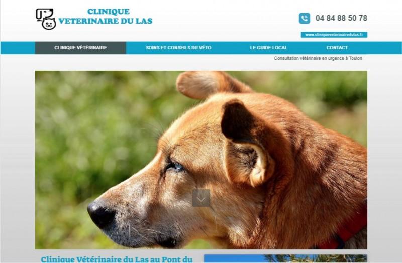 Vétérinaire compétent à Toulon